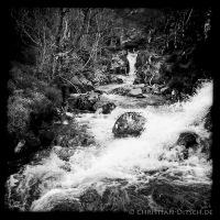 Bach am Wanderweg um Loch Affric in den North West Highlands. 25.5.2015